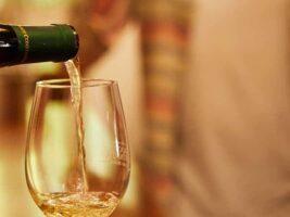 ¿Hablamos de vinos?