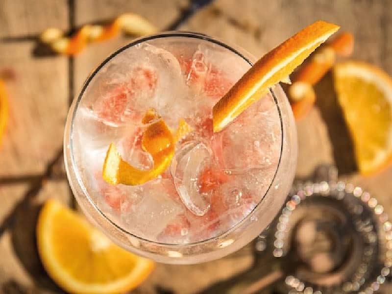 gin tonic fresas y naranja