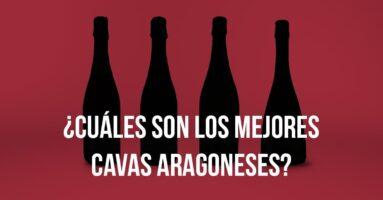 Los 4 mejores Cavas de Aragón para Navidad