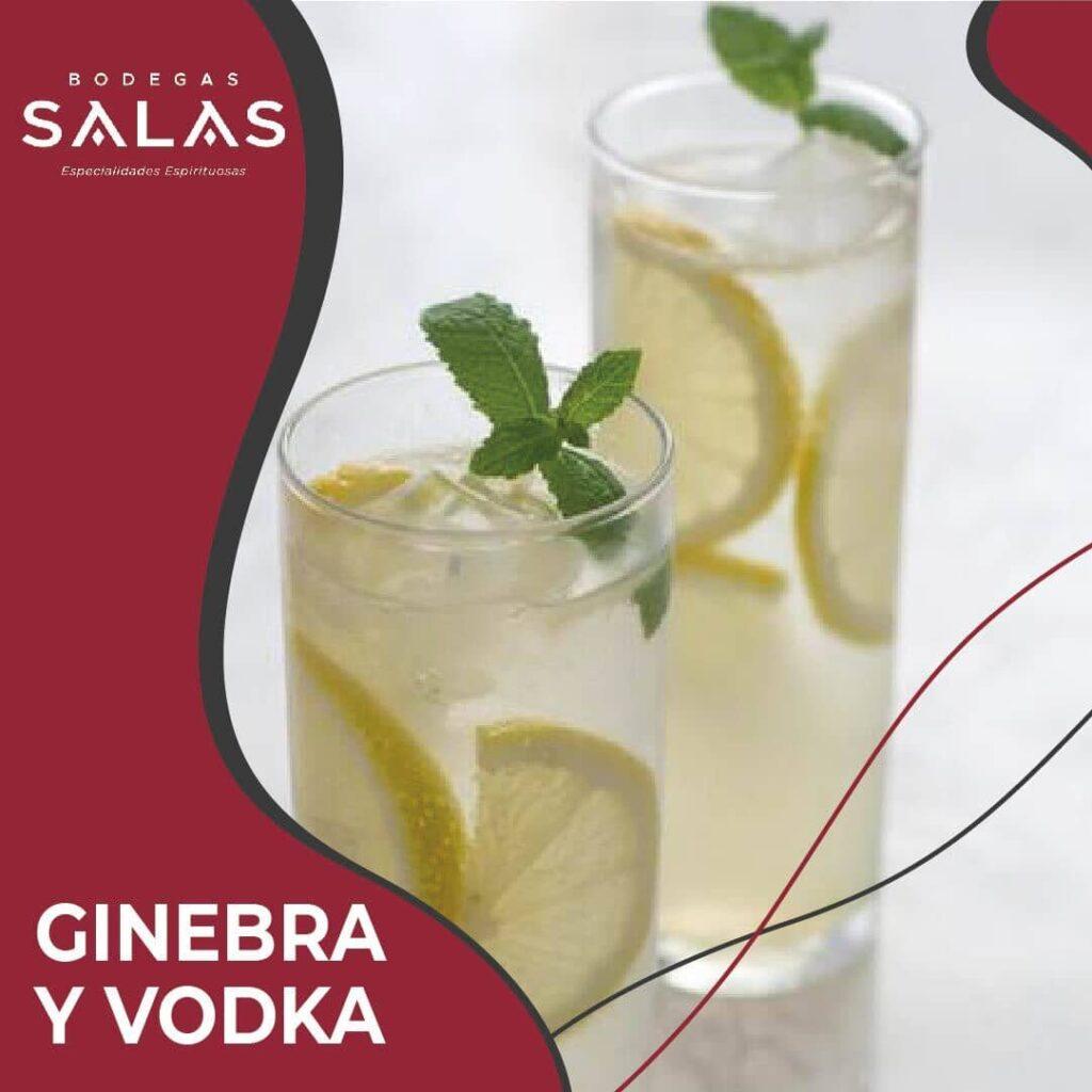 coctel-con-ginebra-y-vodka