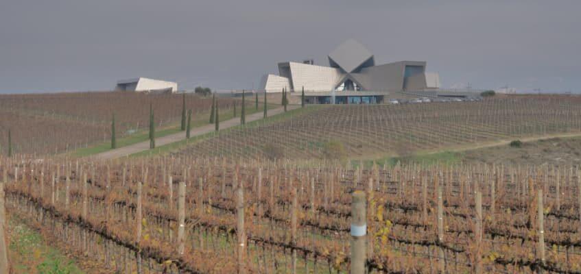 precio vinos somontano