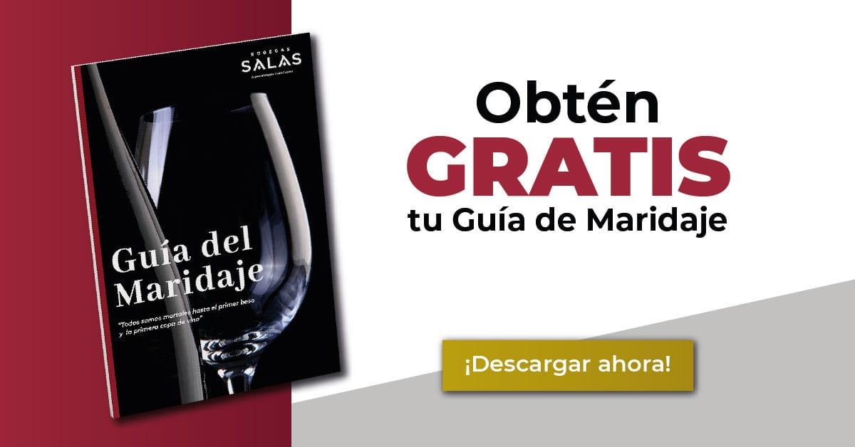 Maridaje de vinos y platos Descargar Guía